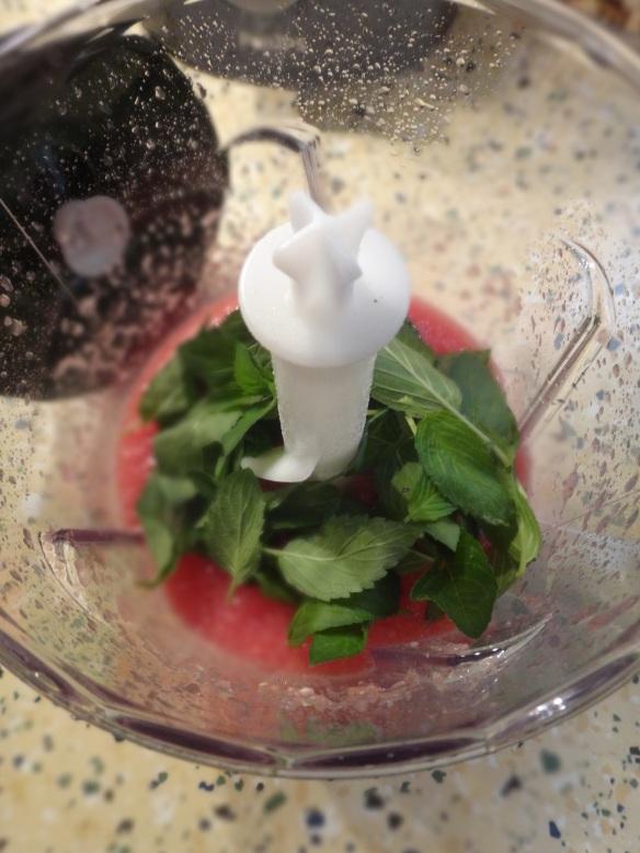 test wassermelonensaft 2
